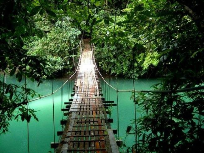 Swing Bridge in Ecuador