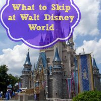 What to Skip at Walt Disney World