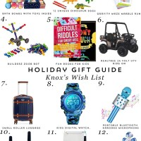 Gift Guide: Knox's Wish List