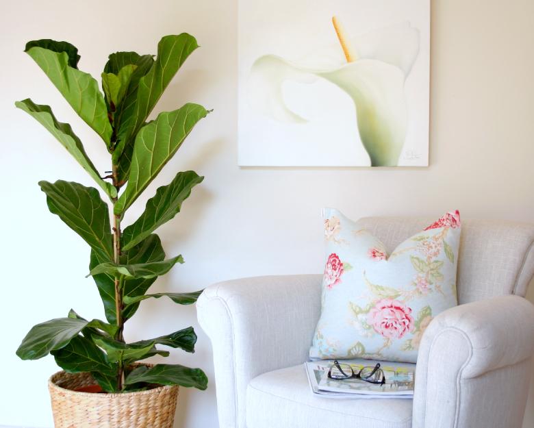 DIY-planter-fiddle-leaf-fig-tree1