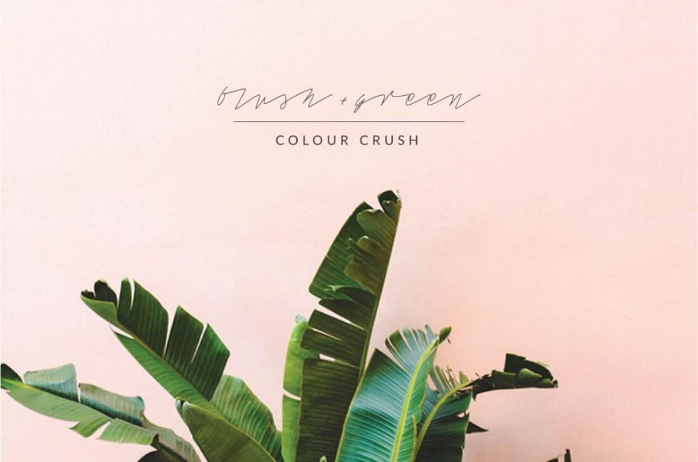 colour-crush-blush-green-01