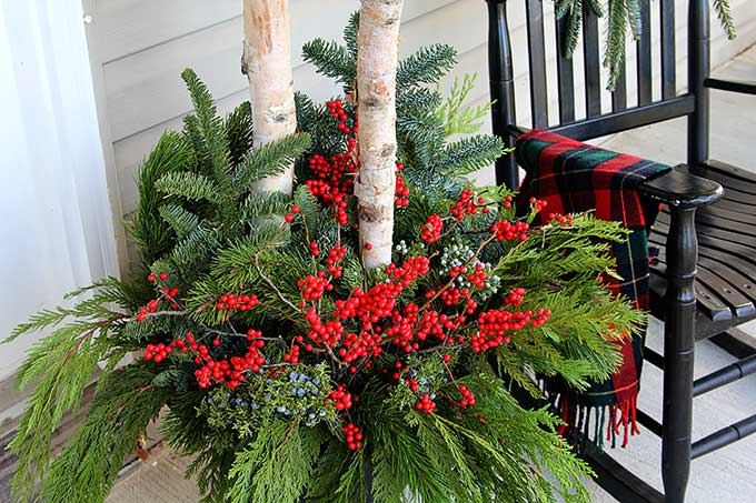 Birch Branches And Winterberry Winter Porch Pots