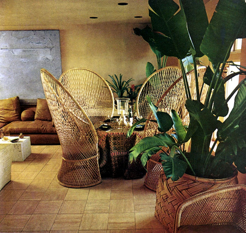 Decorating with House Plants  Top Design Tips
