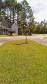 TCAC - Driveway Entry