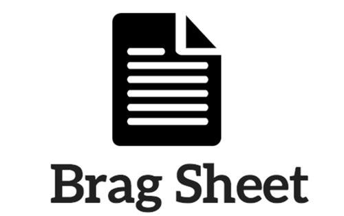 Counselors / Senior Brag Sheet