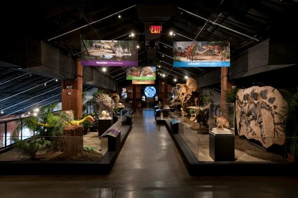 At Houston Museum of Natural Science Sugar Land