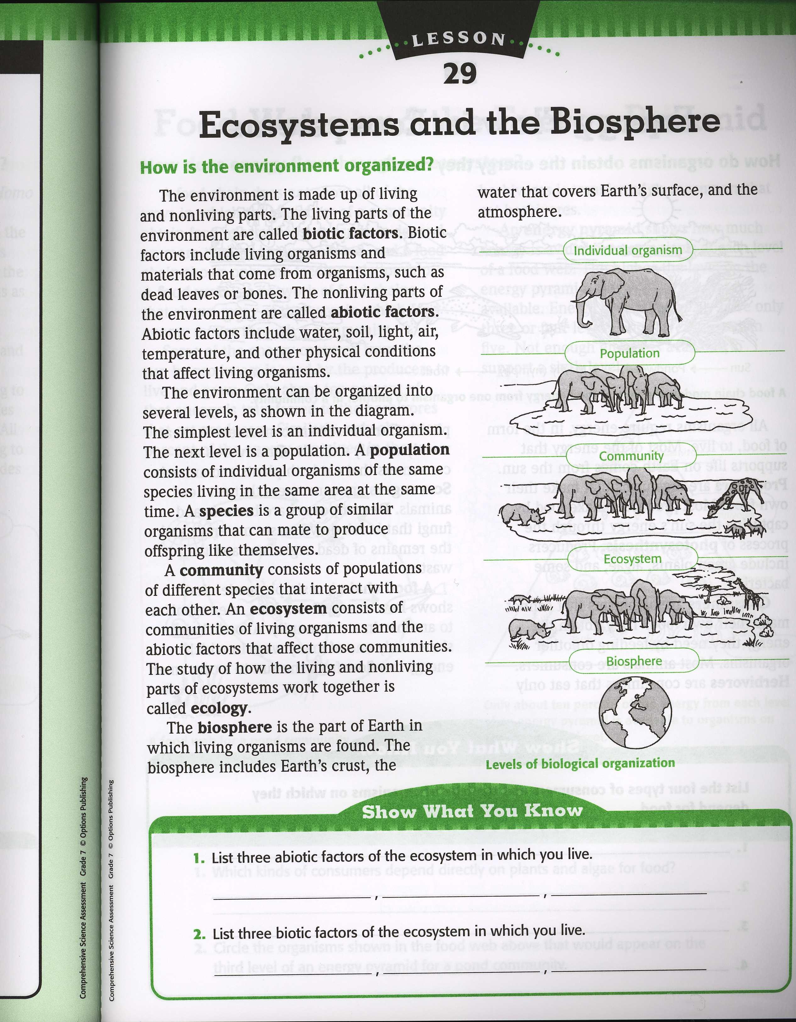 Levels Of Organization Ecology Worksheets