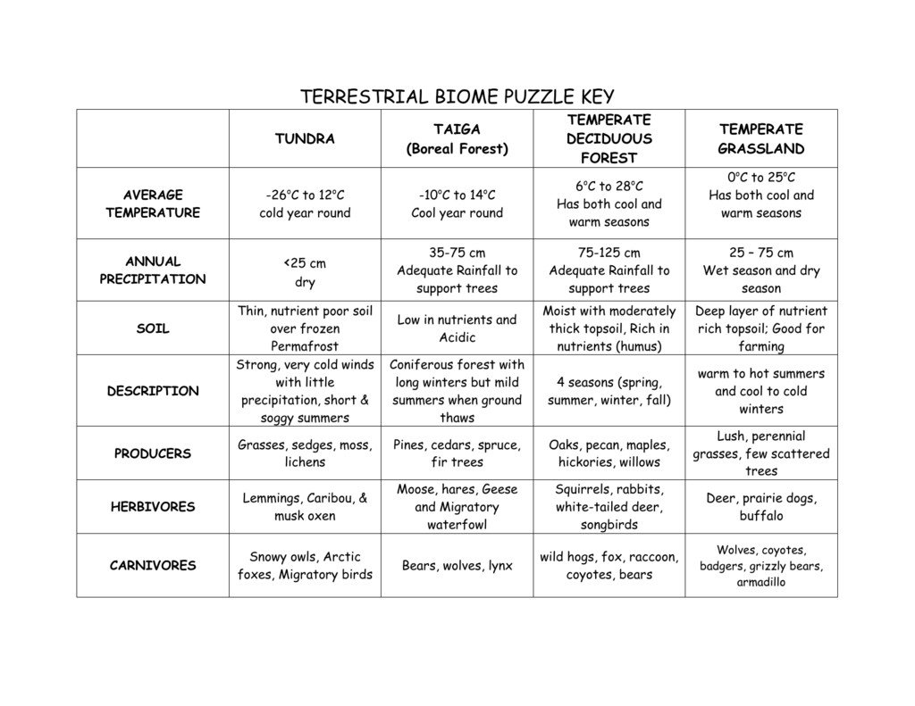 Terrestrial Biomes Worksheets