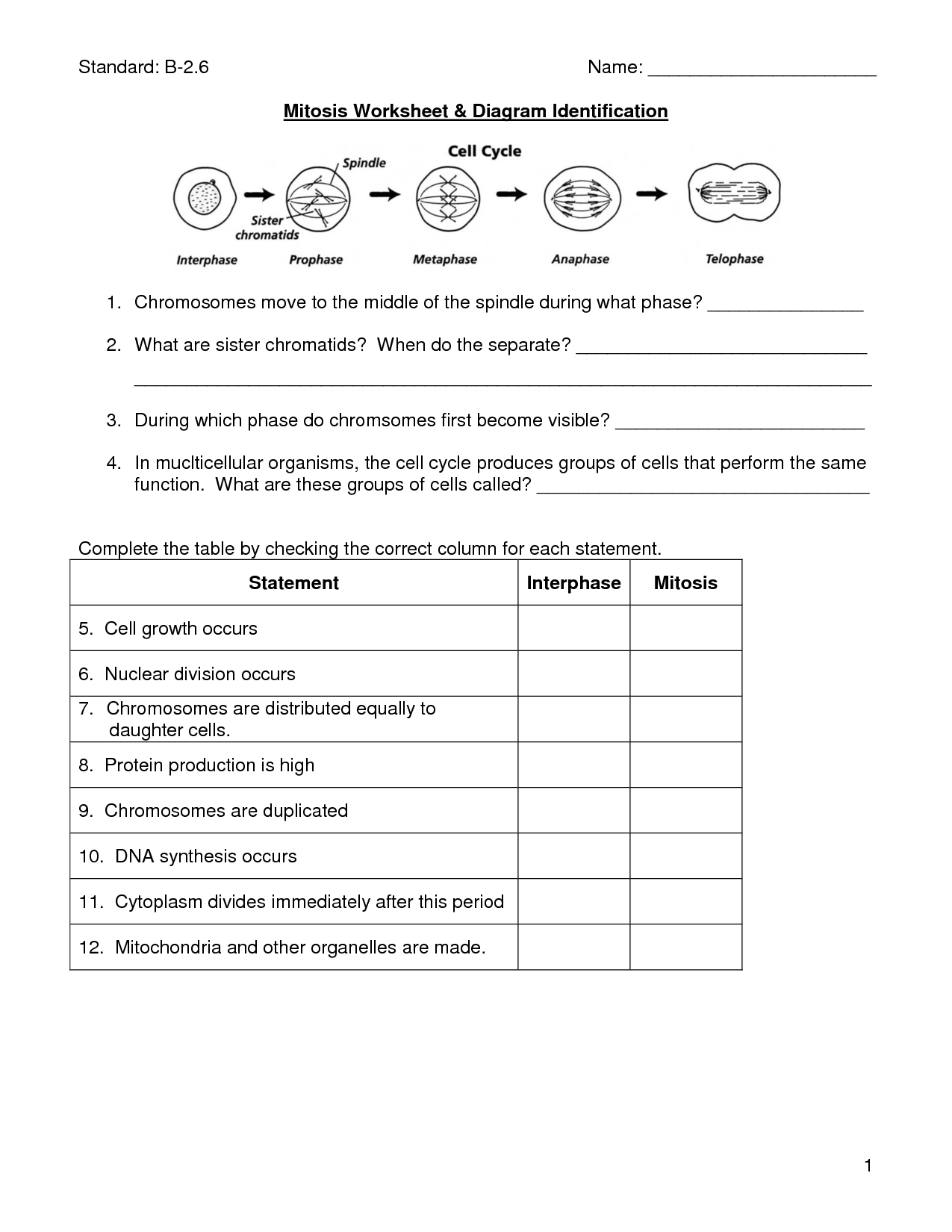 Cell Division And Mitosis Worksheet Answer Key