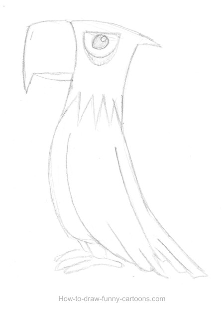 Eagle drawing (Sketching + vector)