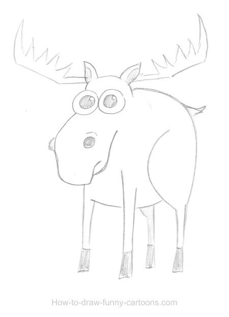 Moose drawings (Sketching + vector)