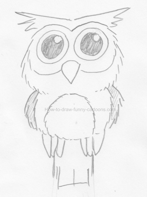 Drawn Owl Step By Step