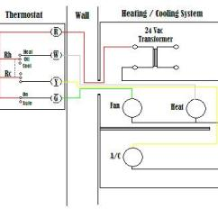 7 Wire Thermostat Wiring Diagram Lateral Skull With Labels A Basic