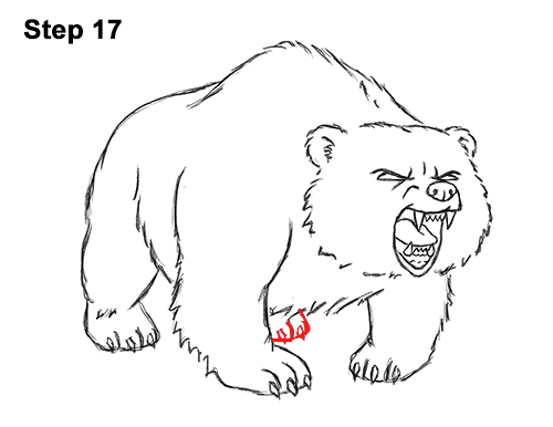 How to Draw a Bear Roaring (Cartoon)