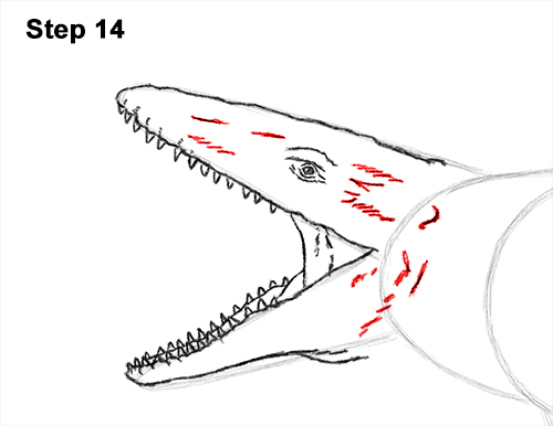 How to Draw Mosasaurus