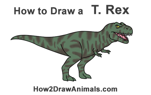 how to draw a simple t rex