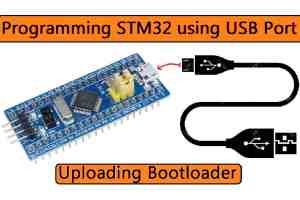 STM32 Bootloader Programming STM32F103C8 Board using USB Port
