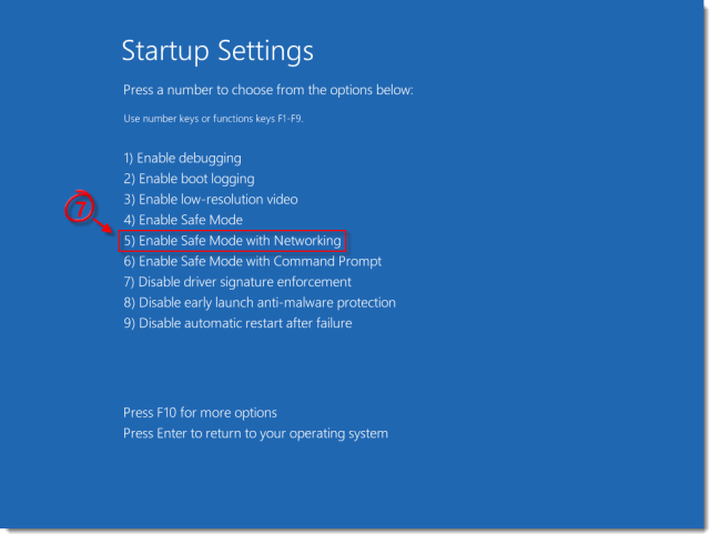 SafeMode_StartupOptions