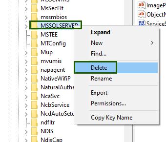 delete_registry_service
