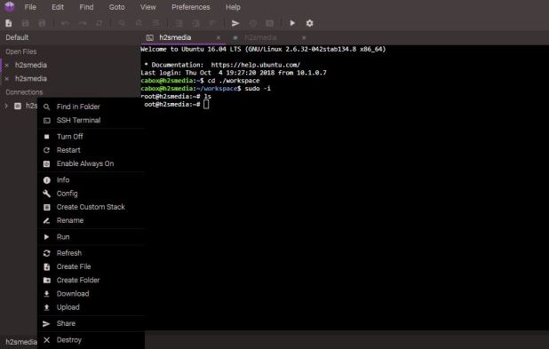 online full-fledged Linux Virtual Terminals running in containers