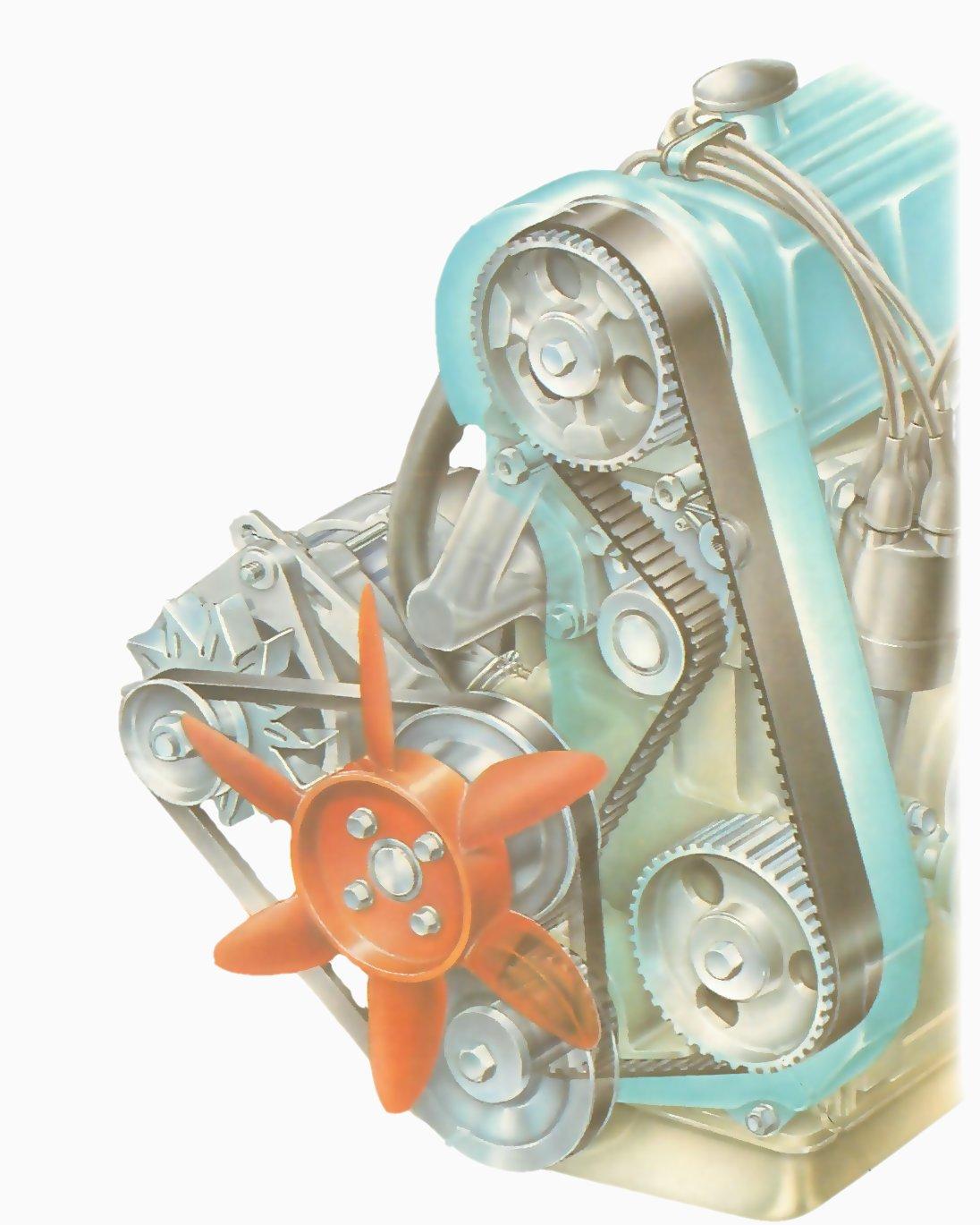 hight resolution of adjusting a camshaft timing belt engine