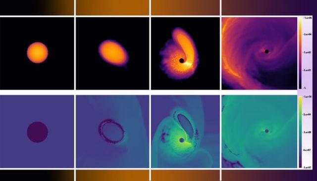 Black holes gravity