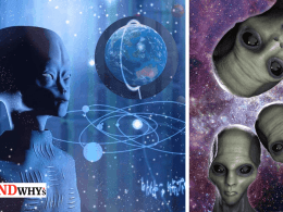 Aliens Imprisoned Humans