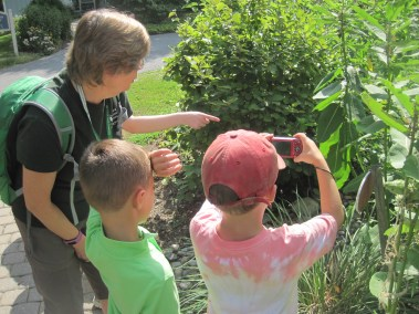 Howard County Conservancy campers photograph nature to identify on iNaturalist and enter into art compilations.