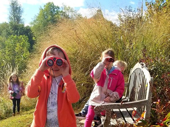 Postponed: Nature play: engage your little naturalists at home