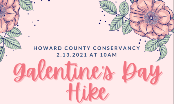 SOLD OUT: Galentine's Day Hike