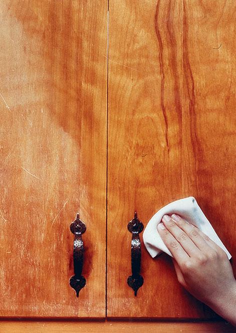 Carnauba Wax Wood Finish