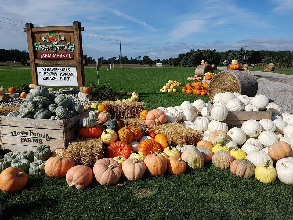 Pick your pumpkins