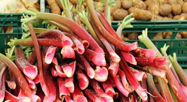 How to Grow Rhubarb - Planting and Harvesting Rhubarb Plants