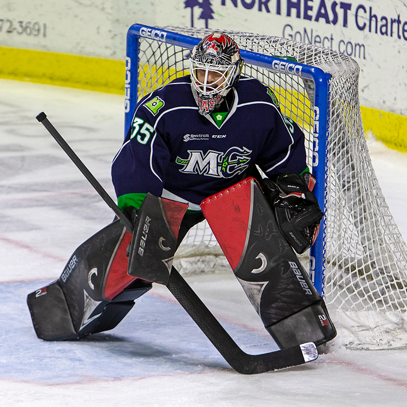 Newfoundland Growlers Zach O'Brien AHL 2015-16 Chicago Wolves