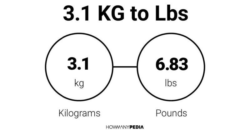 3.1 KG to Lbs - Howmanypedia.com