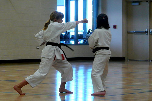How Much Do Karate Lessons For Kids Cost? | HowMuchIsIt.org