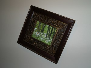 Hang a picture today.