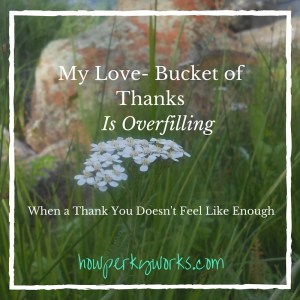 My Love- Bucket of Thanks Is Overfilling