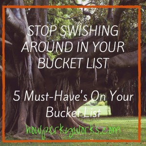 Stop Swishing Around In Your Bucket List 5 Things You Shouldn't Leave Off Your List(1)