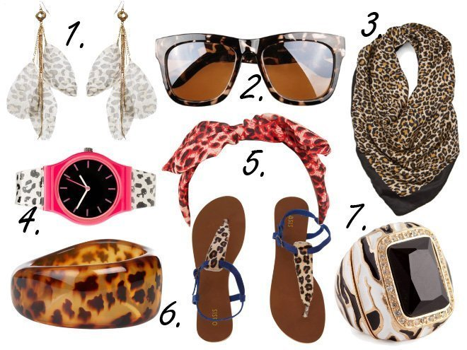 Animal Print Overload: Leopardy Accessories Under $50!