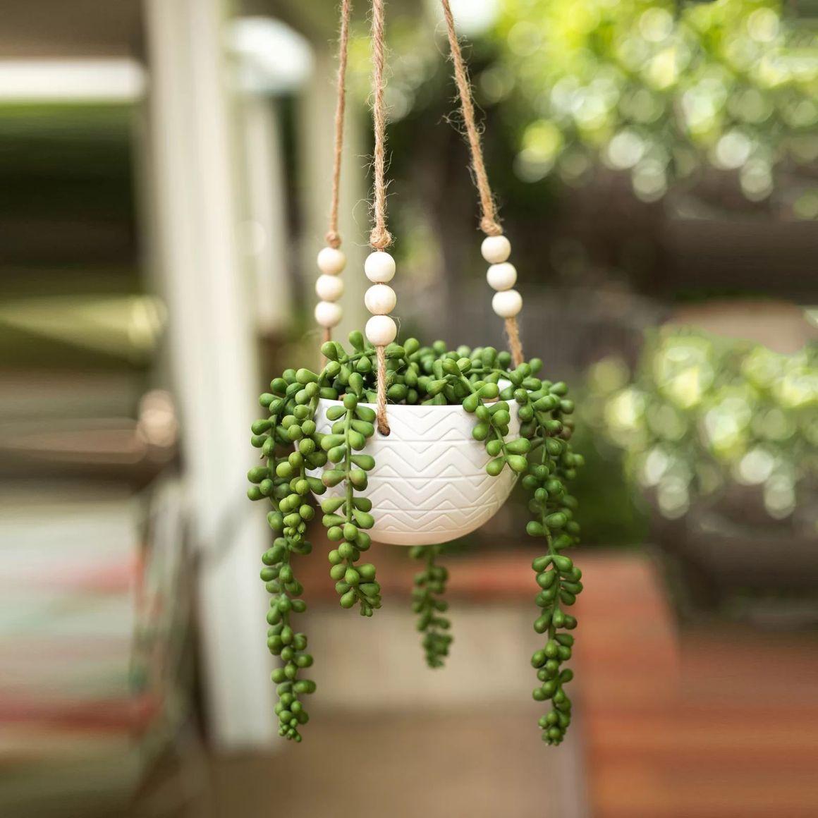 Mix-Hanging-Diamond-Line-Ceramic-Agave-Plant-in-Planter
