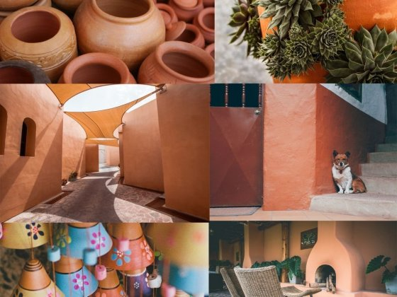 Terracotta Color – Your Guide on Decorating with the Trending Earthy Shade 2