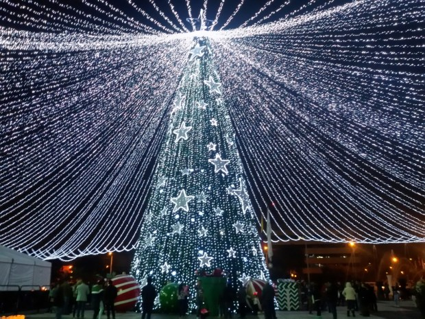 Christmas tree in Bogota