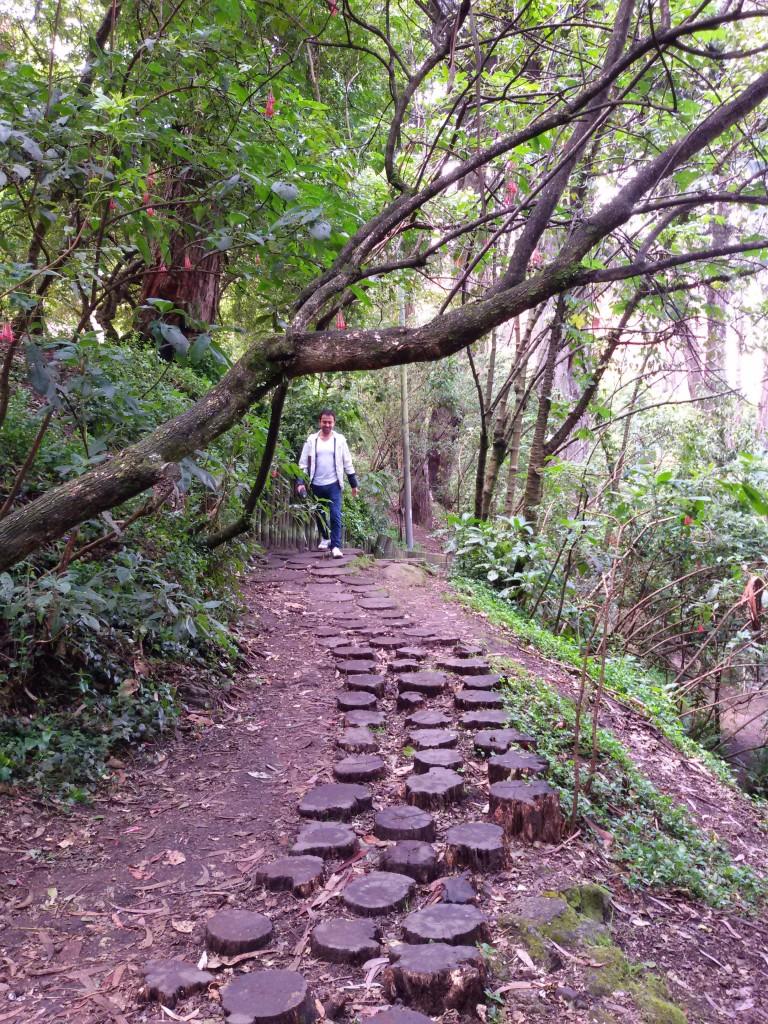 Bogota nature path
