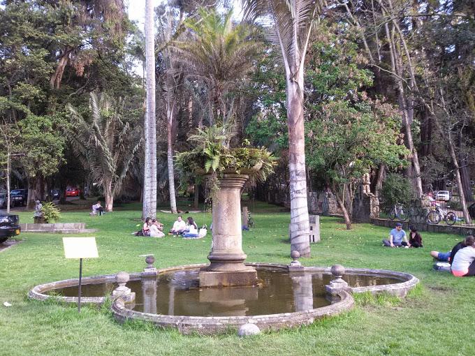 Chico park