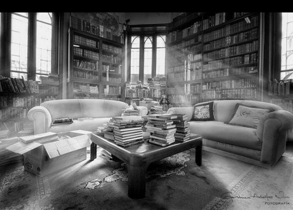 Merlin bookstore in bogota