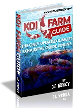 how to launch a koi business