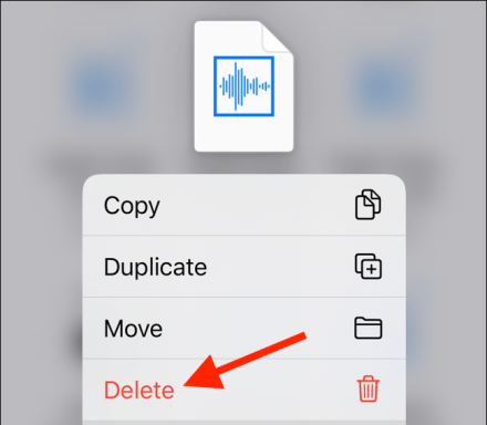 Tap on Delete from the menu to delete the downloaded file