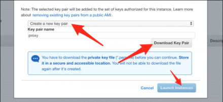 "Click ""Create a New Key Pair,"" and then click ""Download Key Pair."" After it downloads, click ""Launch Instances."""