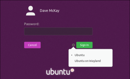 Password entry screen with the Wayland or Xorg menu displayed
